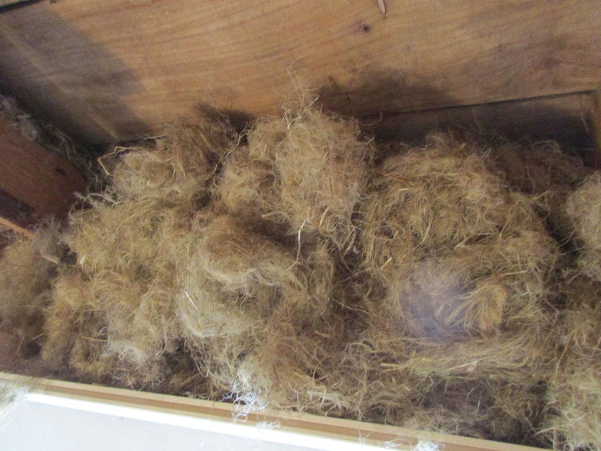 Bio Bâtisse : Isolation des combles en laine de chanvre soufflée